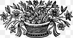 Flower - Flower Drawing PNG