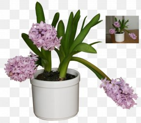 Flower Pot - Flowerpot Chelsea Flower Show DeviantArt PNG
