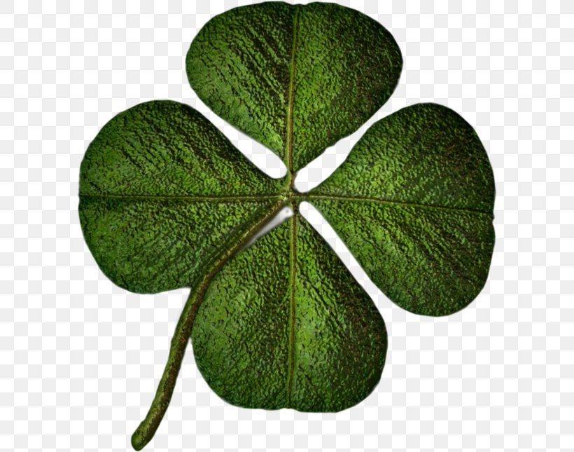 Saint Patrick's Day Shamrock Holiday Clip Art, PNG, 600x645px, 2017, Shamrock, Collage, Grass, Holiday Download Free