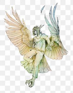 Harpy Legendary Creature Drawing Art Bird PNG