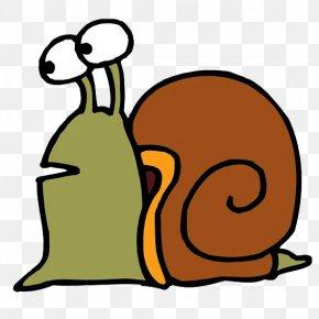 Snails - Snail Download Clip Art PNG