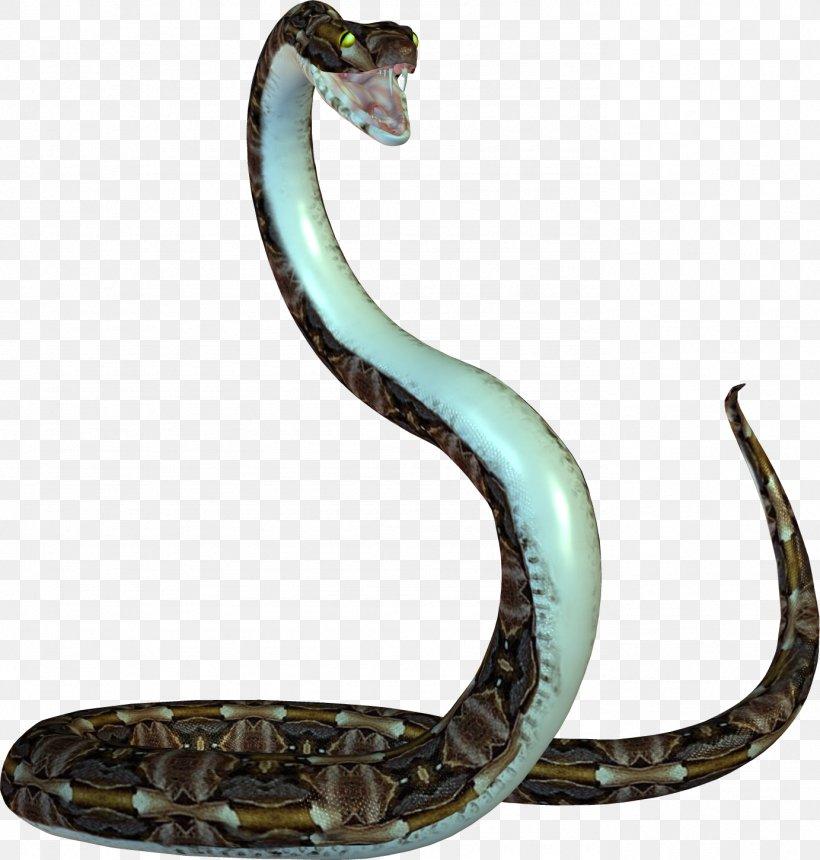 Snake Reptile Desktop Wallpaper Png 1383x1451px Snake