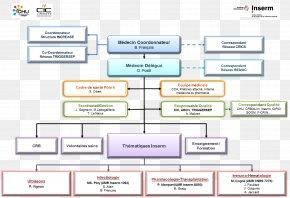 Missions - Paper Computer Software Computer Program Document Diagram PNG
