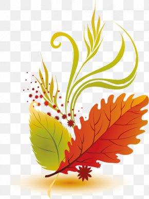 Leaf - Autumn Leaf Color Autumn Leaves Clip Art PNG