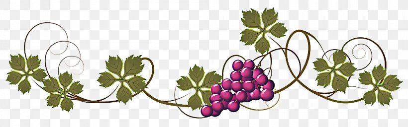 Leaves Background Png 1000x313px Common Grape Vine Flower Fruit Grape Grape Leaves Download Free