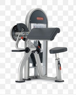 Gym Fitness Equipment - Biceps Curl Star Trac Lying Triceps Extensions Strength Training Pulldown Exercise PNG