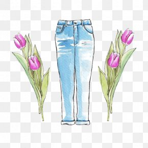 Drawing Jeans - Jeans Trousers Drawing PNG
