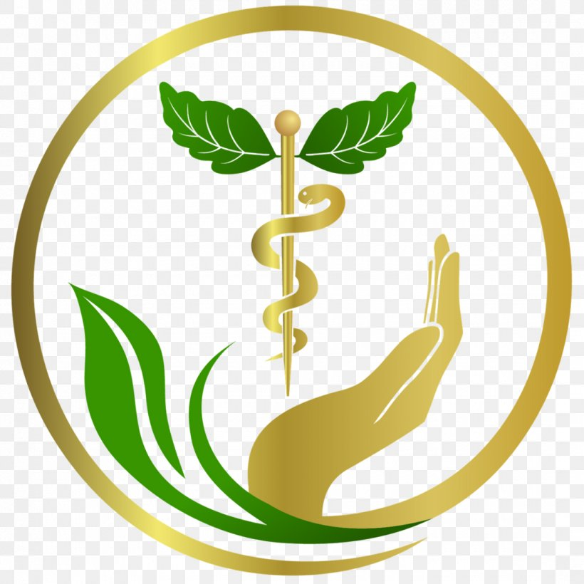 Green Leaf Logo, PNG, 1080x1080px, Naturopathy, Acupuncture, Ayurveda, Clinic, Emblem Download Free