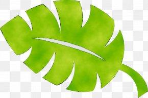 Leaf Green Plant Stem Plants PNG