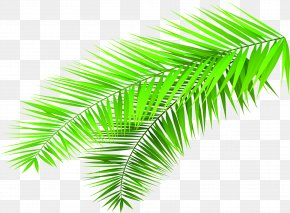 Creative Hand-painted Green Bamboo Leaves - Leaf Bamboo Green PNG