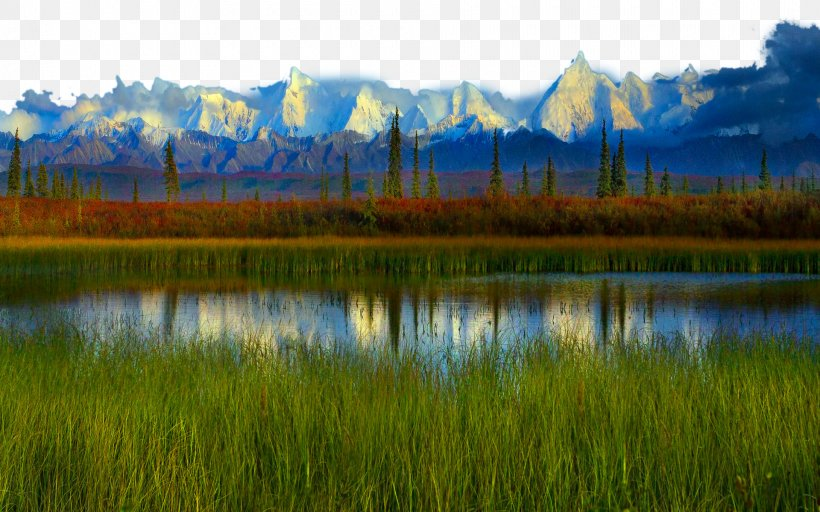 Denali Yellowstone National Park High-definition Television Wallpaper, PNG, 1920x1200px, 4k Resolution, Denali, Bank, Bayou, Biome Download Free