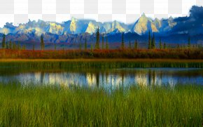 United States Denali National Park Two - Denali Yellowstone National Park High-definition Television Wallpaper PNG
