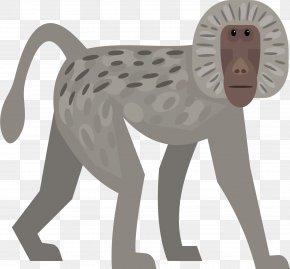 Gray Monkey Vector - Euclidean Vector Monkey PNG