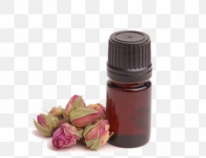 Bottle Of Essential Oil - Aromatherapy Essential Oil Naturopathy Massage PNG