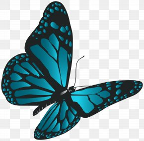 Blue Butterfly Clip Art - Monarch Butterfly Clip Art PNG