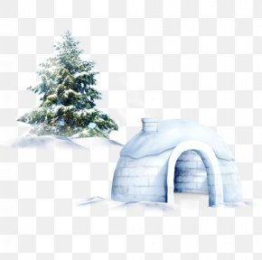 Creative Christmas - Pine Tree Snow Christmas PNG