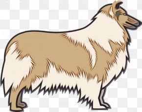 Shetland Sheepdog Dog Breed - Dog Scotch Collie Collie Rough Collie Dog Breed PNG
