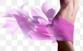 Woman - Female Body Shape Human Body Woman Vaginoplasty Surgery PNG