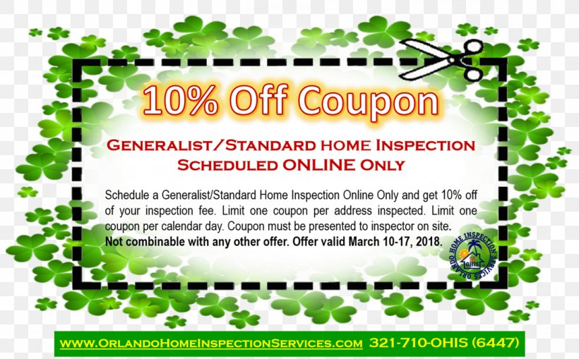 Leaf Font Brand Flowering Plant, PNG, 1100x684px, Leaf, Advertising, Area, Border, Brand Download Free