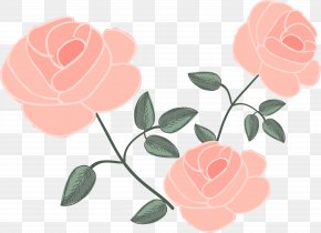 Pink Rose - Rose Flower Euclidean Vector Drawing PNG