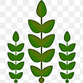 Plant Stem Tree - Leaf Green Plant Flower Tree PNG