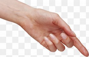 Hands , Hand Image Free - Hand Icon PNG