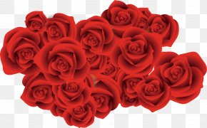 Red Rose Sea Creatives - Garden Roses Beach Rose Red Flower PNG