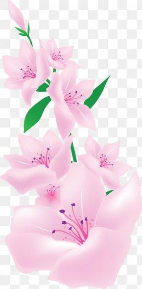 Pink Light - Pink Flowers Clip Art PNG