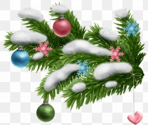Fir-tree - Spruce New Year Tree Branch Leaf PNG