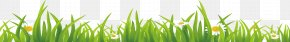 Grass - Vetiver Download Wheatgrass Wallpaper PNG