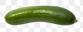 Cucumber - Cucumber Vegetable PNG