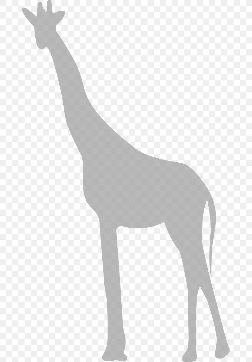 Giraffe Clip Art, PNG, 675x1175px, Giraffe, Black And White, Deer, Giraffidae, Horse Like Mammal Download Free