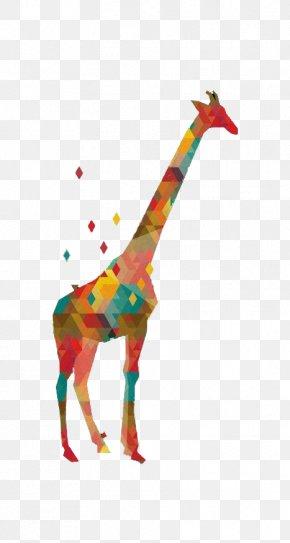 Color Geometric Giraffe - Northern Giraffe Graphic Design Illustration PNG