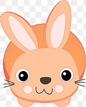Tail Domestic Rabbit - Rabbit Cartoon Nose Snout Rabbits And Hares PNG