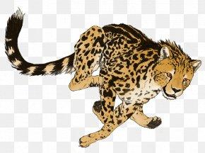 Cheetah Transparent Picture - Cheetah Cat PNG