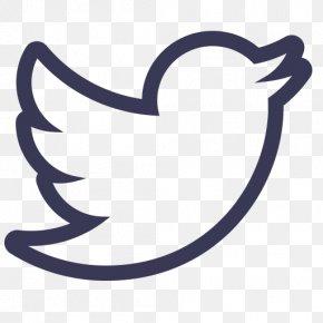 Social Media - Logo Social Media YouTube PNG
