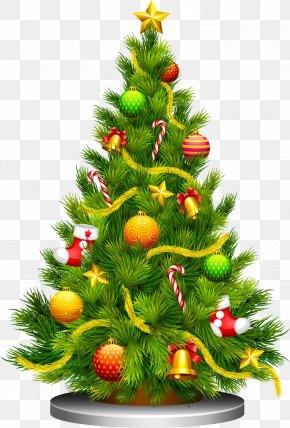 Cartoon Christmas Tree - Light Up Night Christmas Tree Little Christmas Clip Art PNG