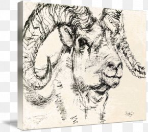 Sheep Barbacoa Drawing Image Lamb, PNG, 500x500px, Sheep