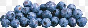 Blueberries - Frutti Di Bosco European Blueberry PNG