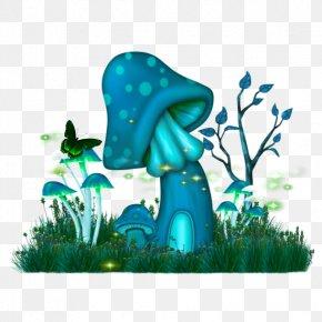 Mushroom - Common Mushroom Fungus Psilocybin Mushroom Magic Mushrooms PNG