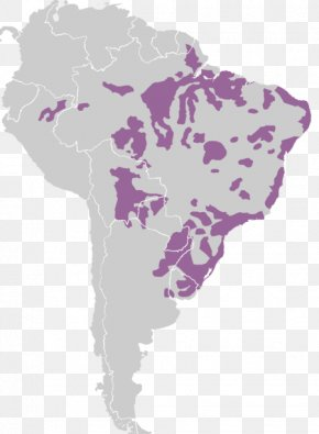 United States - South America United States Latin America Indigenous Languages Of The Americas Map PNG