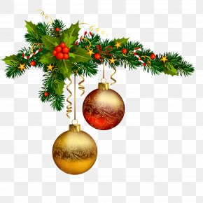 Santa Claus - Santa Claus Christmas Decoration Christmas Day Christmas Tree Vector Graphics PNG