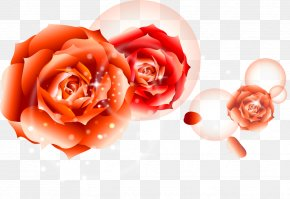 Rose Flower - Birthday Cake Lunar New Year Happy Birthday To You Birthday Customs And Celebrations PNG
