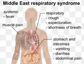 Health - Public Health Middle East Respiratory Syndrome Severe Acute Respiratory Syndrome Pandemic PNG