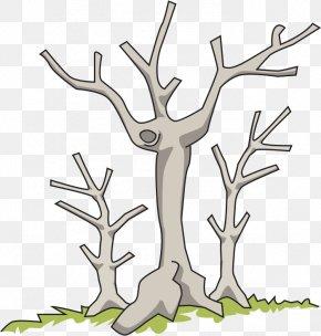Dead Clipart - Tree Branch Clip Art PNG
