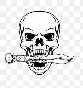 Skull - Skull Drawing Illustration PNG