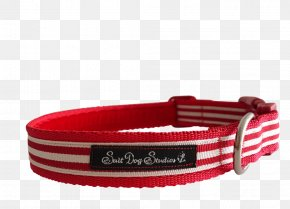 Dog Collar - Dog Collar Webbing Fashion PNG