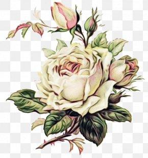 Flower Arranging Floribunda - Bouquet Of Flowers Drawing PNG