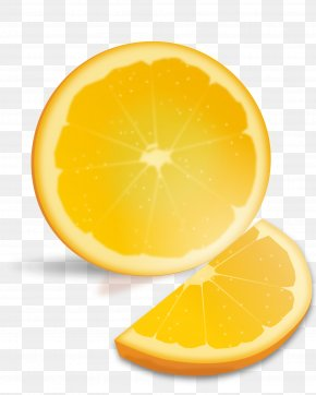 Orange Transparent - Orange Juice Valencia Orange Lemon Grapefruit PNG