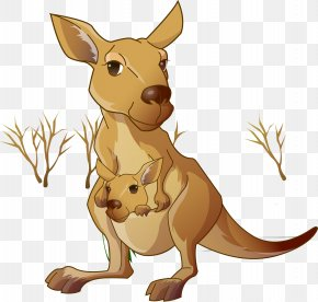 Kangaroo Mom And Child - Red Kangaroo Macropodidae Cartoon PNG
